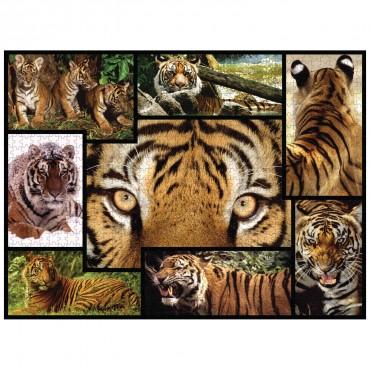 WWF 1000 piece puzzle - Tigers