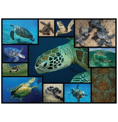 WWF 1000 piece puzzle - Sea Turtles