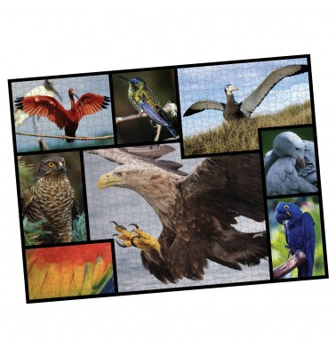 WWF 1000 piece puzzle - Birds
