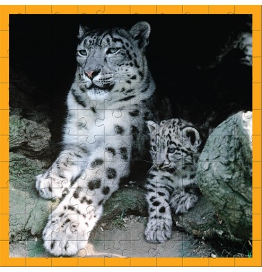 WWF 100 pc puzzle - Snow Leopards