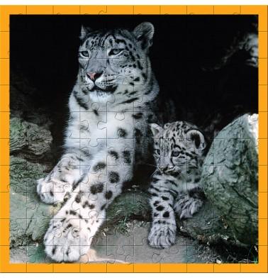 WWF Animal 100 pc puzzles - Baby Snow Leopard