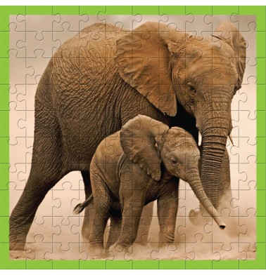 WWF 100 pc puzzle - Elephants