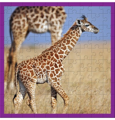 WWF Animal 100 pc puzzles - Baby Giraffe