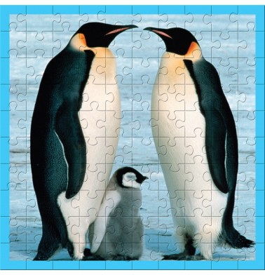 WWF Animal 100 pc puzzles - Baby Penguin